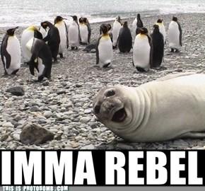I'm So Rebel