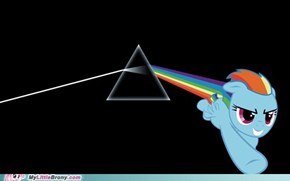 Dark Side of the Dash