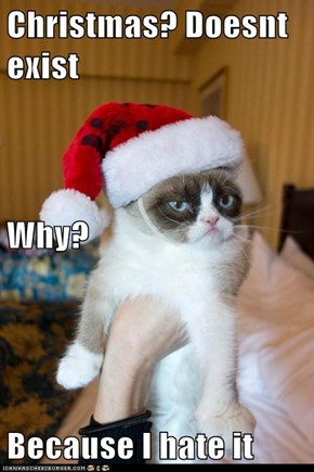 Christmas? Doesnt exist Why? Because I hate it