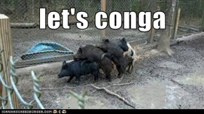 let's conga