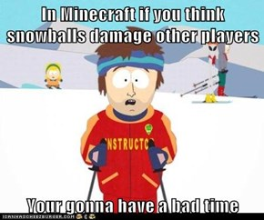 In Minecraft if you think snowballs damage other players  Your gonna have a bad time