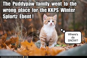 KKPS Winter Splortz: the Puddypaw family gets it wrong