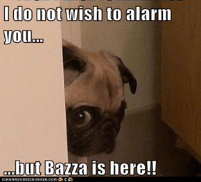 I do not wish to alarm you...  ...but Bazza is here!!
