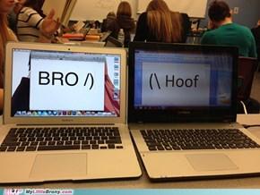 Internet Brohoof