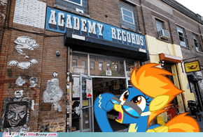 Academy Records, Academy Records Everywhere