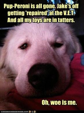 Pity-Pup.
