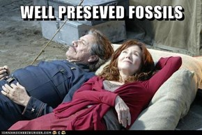 WELL PRESEVED FOSSILS