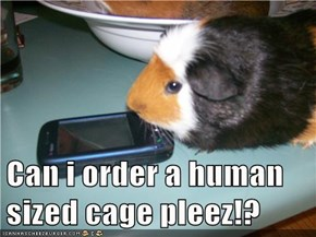 Can i order a human sized cage pleez!?