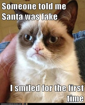 Someone told me Santa was fake  I smiled for the first time