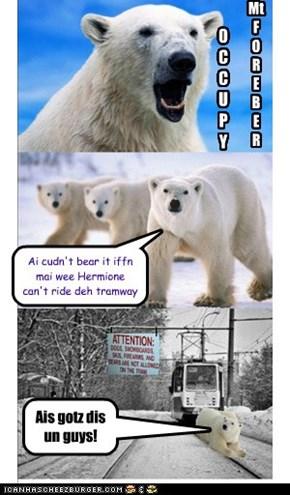 Deh bears OCCUPY Mt. Fereber Tramway