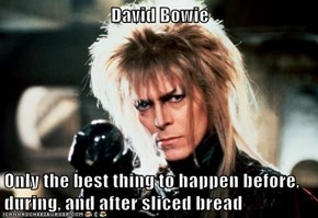 David Bowie  Only the best thing to happen before, during, and after sliced bread
