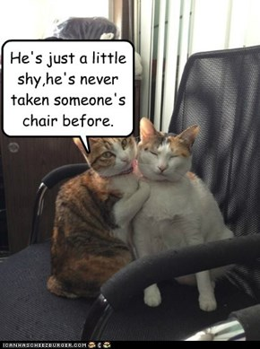 He's just a little shy,he's never taken someone's chair before.