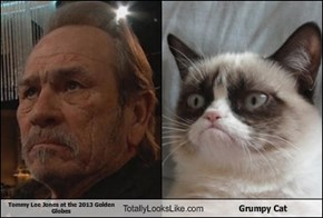 Tommy Lee Jones at the 2013 Golden Globes Totally Looks Like Grumpy Cat