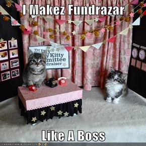 I Makez Fundrazar  Like A Boss