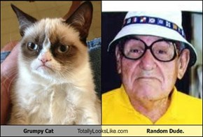 Grumpy Cat Totally Looks Like Random Dude.