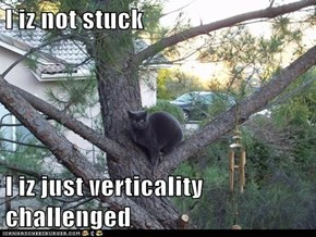 I iz not stuck  I iz just verticality challenged