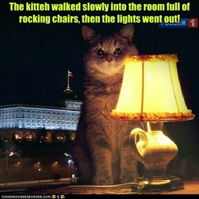 The kitteh walked slowly into the room full of rocking chairs, then the lights went out!