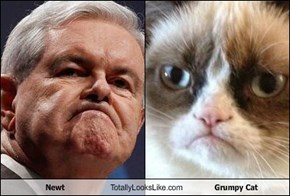 Newt Totally Looks Like Grumpy Cat
