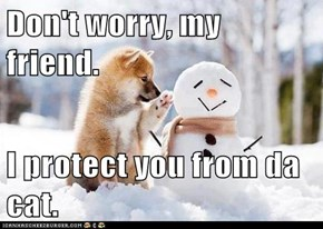 Don't worry, my friend.  I protect you from da cat.