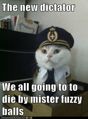The new dictator  We all going to to die by mister fuzzy balls