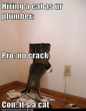 Hiring a cat as ur plumber: Pro: no crack Con: it's a cat