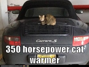 350 horsepower cat warmer