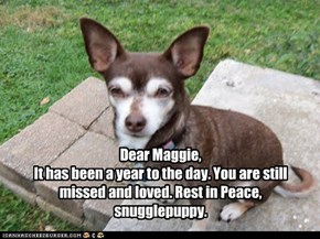 Remembering Maggie Mae