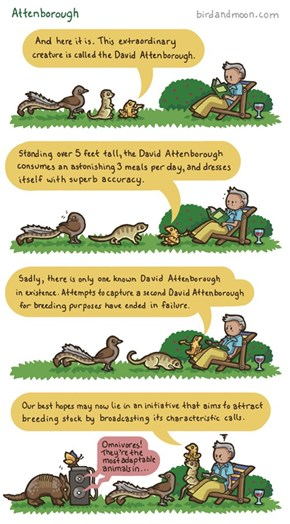 A Tribute to Every Animal Person's Hero: David Attenborough