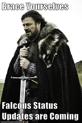 Brace Yourselves  Falcons Status Updates are Coming