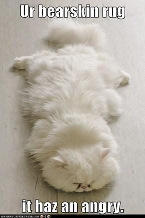 Ur bearskin rug  it haz an angry.