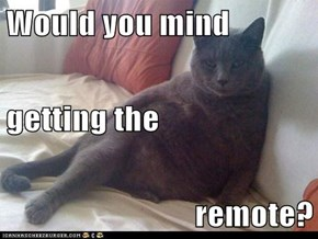 Would you mind   getting the remote?