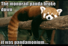 The monorail panda broke down  it was pandamonium....