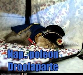 Nap.. poleon Droolaparte