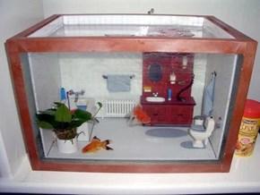 Fish Tank WIN