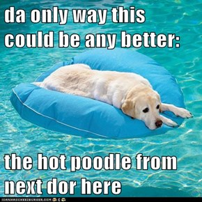 da only way this could be any better:  the hot poodle from next dor here