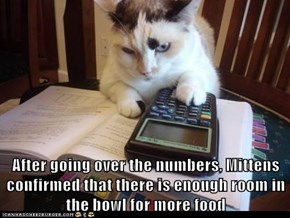 After going over the numbers, Mittens confirmed that there is enough room in the bowl for more food
