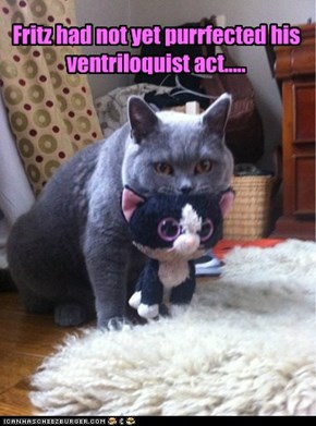 Fritz had not yet purrfected his ventriloquist act.....