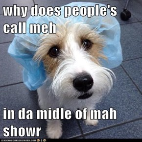 why does people's call meh  in da midle of mah showr