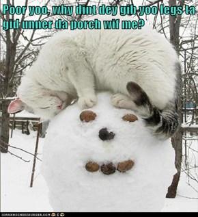 Poor yoo, why dint dey gib yoo legs ta gid unner da porch wif me?