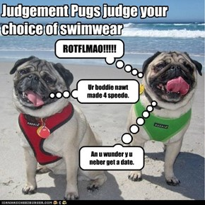Judgement Pugs judge your choice of swimwear
