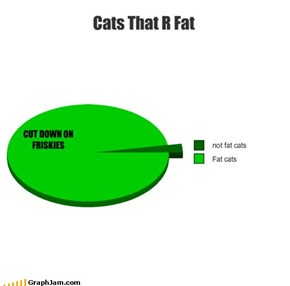 Cats That R Fat