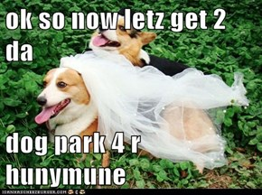 ok so now letz get 2 da  dog park 4 r hunymune