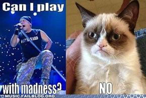 Who Smiles More? Grumpy Cat smiles or Adrian Smith?
