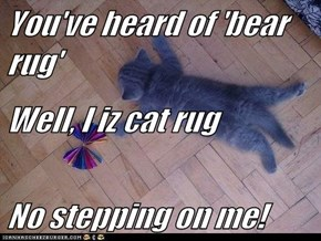 You've heard of 'bear rug' Well, I iz cat rug No stepping on me!