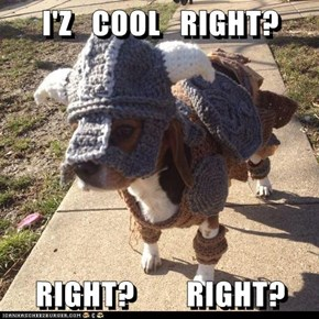 I'Z   COOL   RIGHT?  RIGHT?        RIGHT?