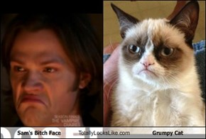 Sam's Bitch Face Totally Looks Like Grumpy Cat
