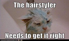 The hairstyler  Needs to get it right