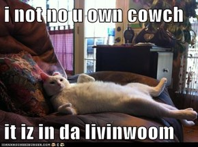 i not no u own cowch  it iz in da livinwoom