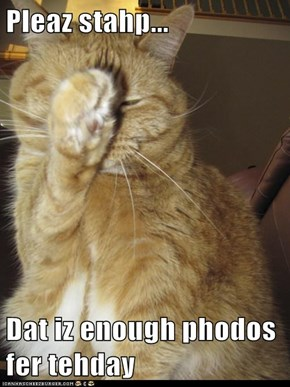 Pleaz stahp...  Dat iz enough phodos fer tehday