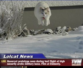 Lolcat News - Hovercat prototype seen during test flight at high security arctic military base. Film at Elebenty.